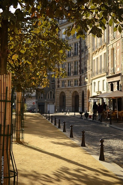 pariisi:  Ile de la Cité, Place Dauphine, Paris I by  Frédéric Douchet on pinterest.com