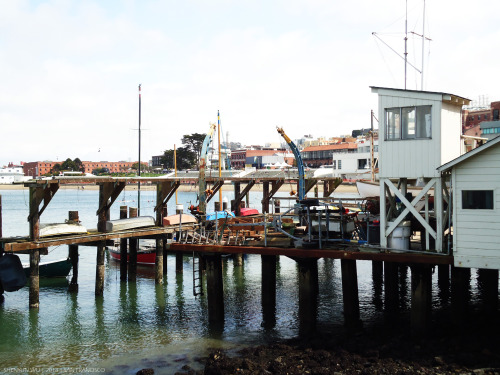 Rustic beauty. #fishermanswharf #sanfran #photography