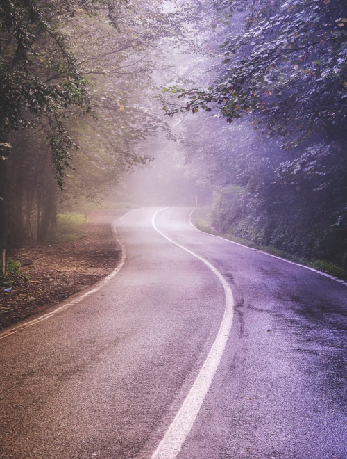 rorschachx:  Misty road | image by zamyad golpayegan
