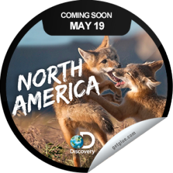 I just unlocked the North America Coming Soon sticker on GetGlue                      1884 others have also unlocked the North America Coming Soon sticker on GetGlue.com                  You're looking forward to the premiere of North America on Discovery. Tune in Sunday, May 19 at 9/8c. Share this one proudly. It's from our friends at Discovery.