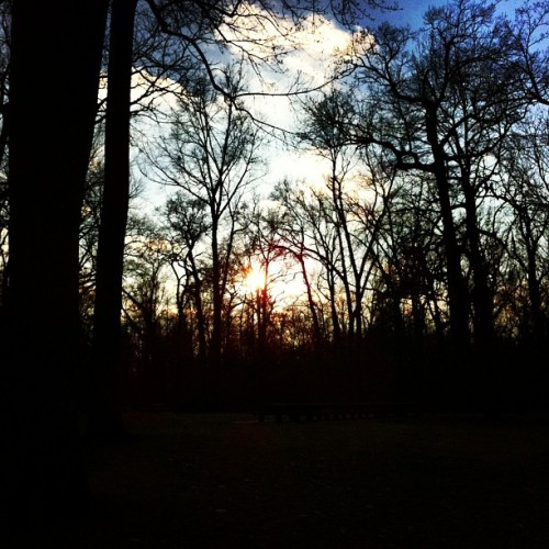 Park day! #park #sunset #clouds #sky #sun #trees #beautiful
