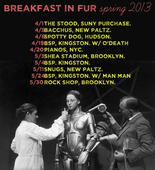 updated spring 2013 shows - details here !