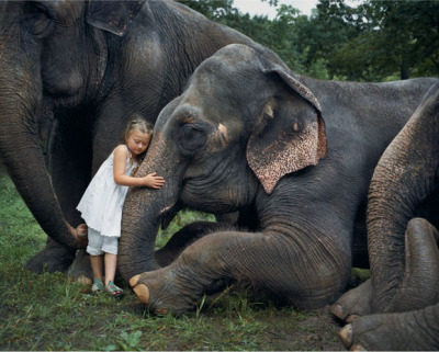 Amelia's World & Animal Affinity by Robin Schwartz A photographer takes collaborative photographs of her daughter interacting with animals.