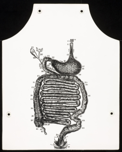 Gear up for barbecue season! George Maciunas' Stomach Anatomy Apron (1967/1973)
