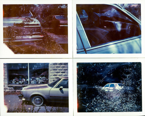 untitled on Flickr.Via Flickr: Polaroid Automatic 430 Land Camera Polaroid 669 Polacolor (expired 2001)