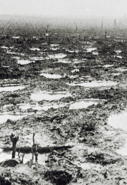 The French wasteland after the Battle of Aisne, WWI.IWM