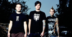 wastingmy-youth:  Blink 182 blog