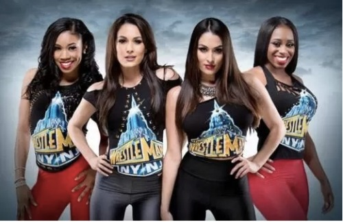 Well this could be interesting. A new reality show called Total Divas is premiering on June 28 and it follows the lives of the WWE Divas!