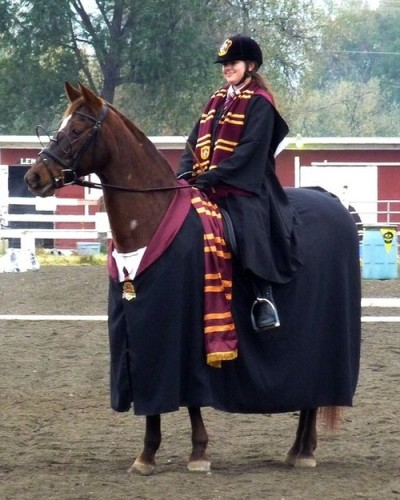 hurryupmerlin:  #I wasn't gonna reblog this but then the horse had glasses
