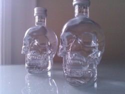 exhale-grunge:    exhale-grunge:   these are my little vodka babies     btw pls don't self promote on this photo