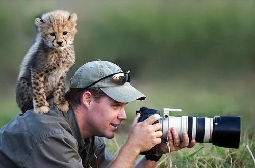 Фотоподборка животных (20 фото)