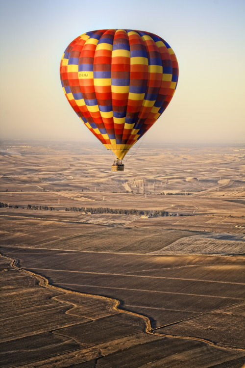 llbwwb:   Come fly with me! (by Zú Sánchez)