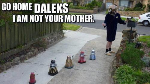 I SO want a flock of mini Daleks so I can do this.  ^_^