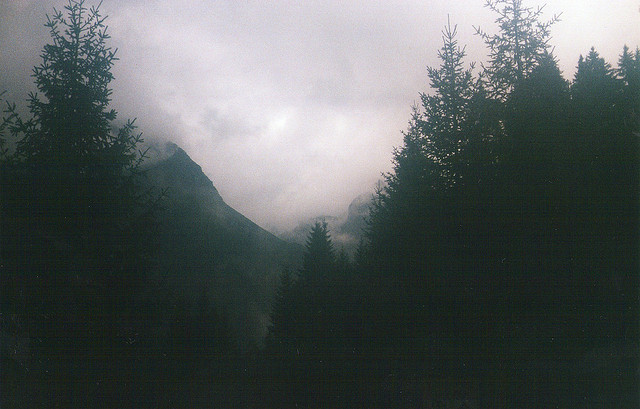 savvydarling:  Tr'09_009 by MrCarbonMonoxide+ on Flickr.