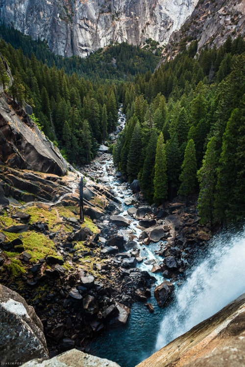 travelingcolors:  Cold Woods, Yosemite | California (by poromaa)