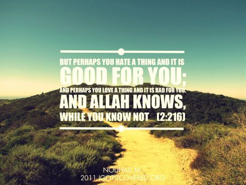 islamicthinking:    But perhaps you hate a thing and it is good for you; and perhaps you love a thing and it is bad for you. And Allah knows, while you know not [2:216]    Ayat favorit saya, selalu melihat kesini saat sedang tidak mendapat apa yg diinginkan :)