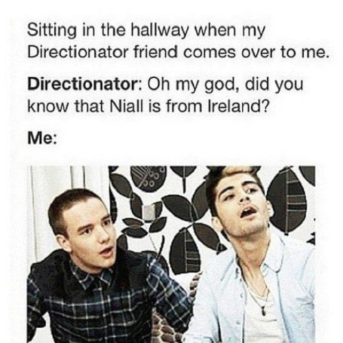 niallmybabiiie:  happens alot At school. Someone would be like did you know … And its like so last year or carrot stuff like I knew that ages ago lol #OneDirection #1DFamily #NiallHoran #HarryStyles #LiamPayne #ZaynMalik #LouisTomlinson #Directioners