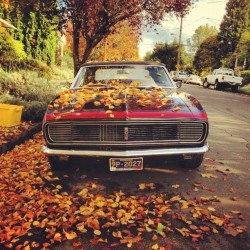 Camaro in fall. by gabege http://instagr.am/p/Rvxz3MsHbN/