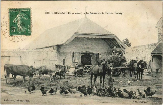 Interior of a farm in rural France, Courdimanche.Vintage postcard, early 1900′s #vintage#postcard#old#antique#vintage postcard#carte postale#ansichtskarte#tarjeta#cartolina#postkarte#interior#farm#ferme#agriculture#rural#countryside#france#europe#photo#photography#horses#chicken#chickens#animals
