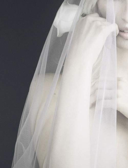 "mariacarlabosscono:  details from ""Karolina In A Dream,"" photographed by Nino Munoz for Numero Tokyo #67 June 2013"