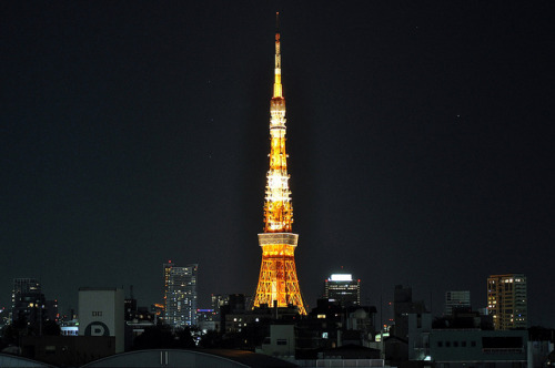 Tokyo Tower at Night by 5oulscape on Flickr.