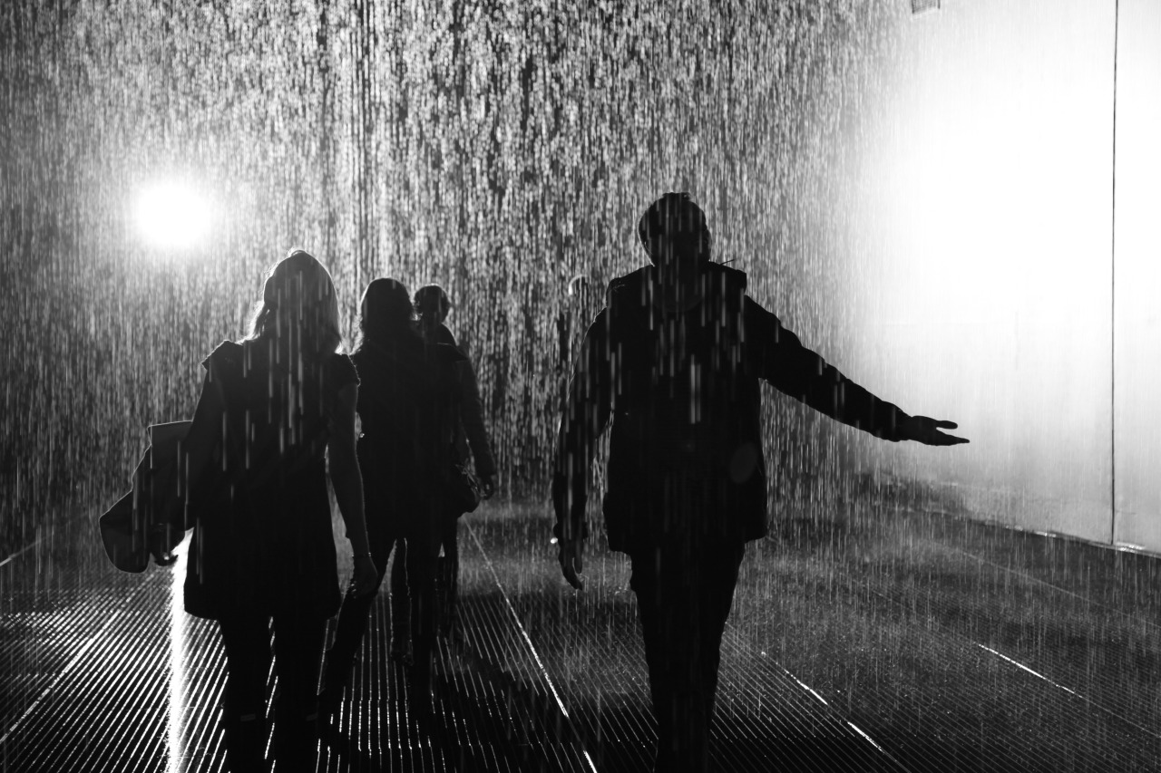 "The Rain Room @ The Barbican, London This installation was simply amazing. Well, actually, there wasn't anything ""simple"" about it. The room was fitted with lots of 3D cameras which sense your location in the room, and automatically turn off the water valves above your head, allowing you to walk through the down pour without getting wet!  THIS IS AT MOMA NY RIGHT NOW"