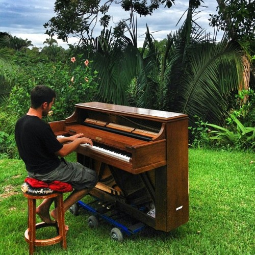 nataleejay:  pianoxamerica:  Jungle piano in Costa Rica… This is the first time ive had to practice in a while. Time to work on exciting music. Taken by @tavishmac  Favorite places, favorite things.