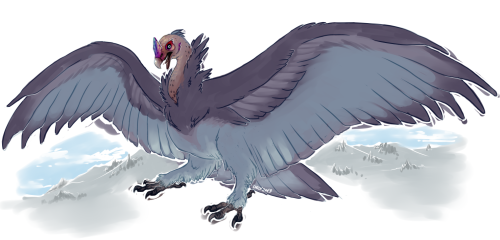 "Quick color concept art of the vlocke, a species of cold-weather carrion bird native to Hel, and one of the largest flighted birds in Valenth. A group of vlockes is called a cemetery. :D (or alternately, an ""Okay, let's get the hell out of here there are all these gigantic birds and I don't think they're very friendly)"
