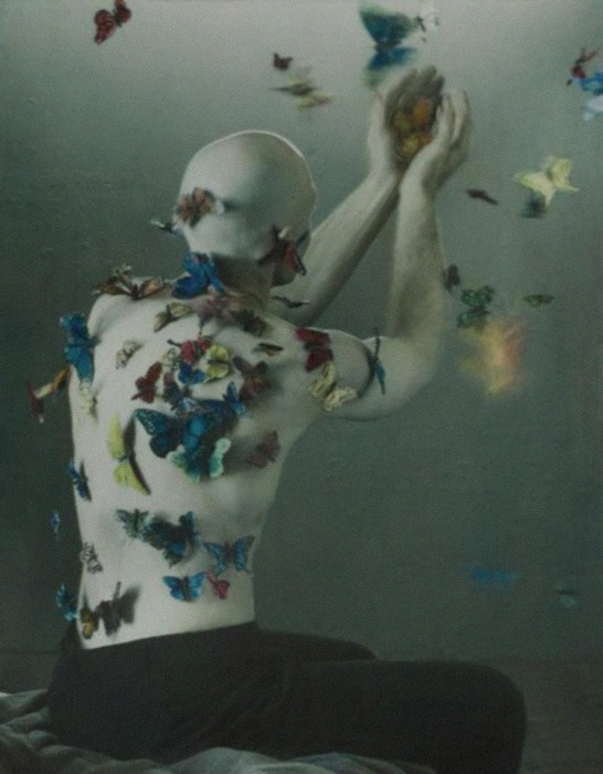 Mourning Cloak II, 2006 by Robert and Shana Parkeharrison