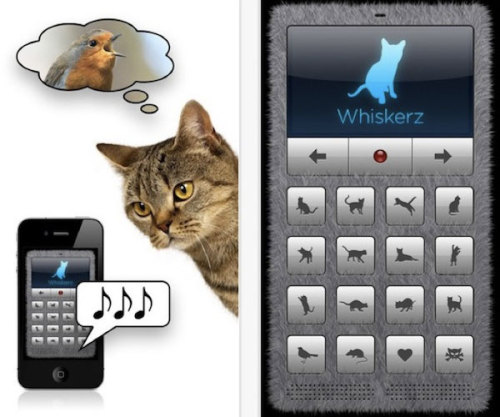Talk to Your Cat with Human-to-Cat Translator for iPhone
