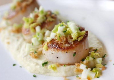 Seared Scallops over Celery Root and Potato Puree  with recipe (link)