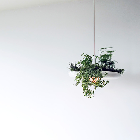Beauty for your ceiling. We're excited to check out this living light at the @IDSToronto Prototype Exhibition.