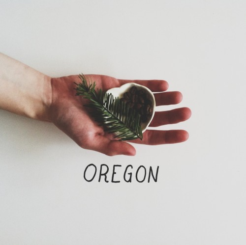 "lylaandblu:  Oregon PrintPhotography x Design | Lyla&BluHere is another little missus from the refined shop! Featuring a lovely hand,  Fir, coffee and a local artists' pottery, these little 5""x7""s are a perfect Oregon addition to the desktop, or great as large scale postcards! Affordable and durable, pick one up here!"