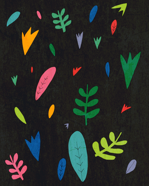 sarahgreenillustration:  sum plants