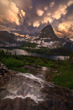 woodendreams:  (by Miles Morgan)