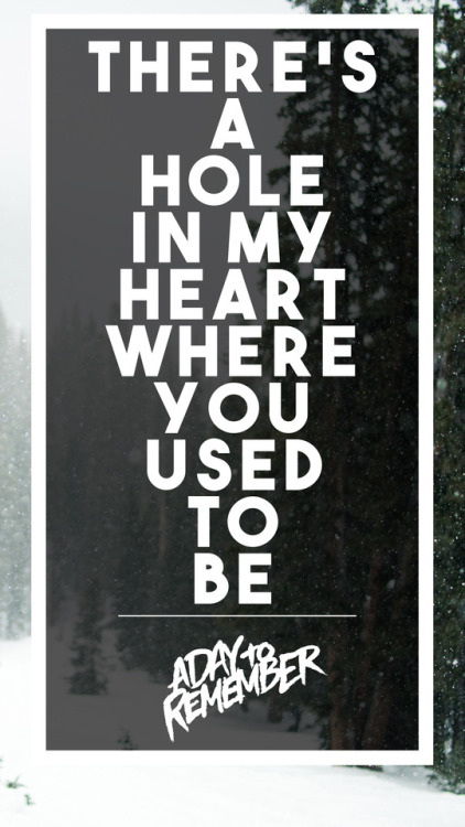A Day To Remember Lyrics Tumblr a day to remember on T...