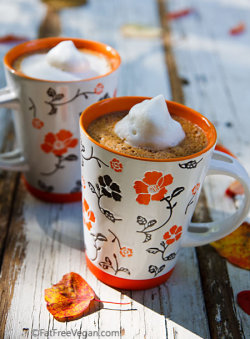 fruit-loop-vegan:  Pumpkin Spice Hot Chocolate by fatfreevegan I served this with a dollop of frothy soymilk on top.  Ingredients 2 1/2 cups non-dairy milk 1/2 cup canned pumpkin 2 tablespoons cocoa powder 3/4 – 1 teaspoon pumpkin pie spice 1/2 teaspoon vanilla extract stevia or other sweetener to taste   Instructions Combine all ingredients except sweetener in blender. Blend at medium speed until smooth. Check sweetness and add sweetener to taste; blend once more. Pour into a saucepan or microwaveable container and heat, stirring at regular intervals, until steaming. Pour into two mugs and serve.   Notes You can easily take this from a beverage to a dessert by making it into pudding. Add 2 1/2 tablespoons of cornstarch to the mixture in the blender and blend well. Heat on the stove or in the microwave, stirring constantly (or once every minute in the microwave), until it boils and thickens. Pour into 4 dessert bowls and refrigerate until set.  Preparation time: 5 minute(s) | Cooking time: 5 minute(s) Number of servings (yield): 2 Nutrition (per serving, using soymilk): 163 calories, 25 calories from fat, 2.9g total fat, 0mg cholesterol, 261.6mg sodium, 408.7mg potassium, 30.3g carbohydrates, 6.1g fiber, 12.9g sugar, 6.8g protein, 4.8 points.