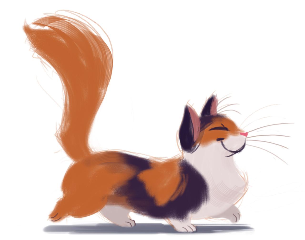 Cat Illustration Tumblr Daily Cat Drawi...