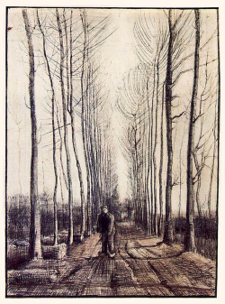 likeafieldmouse:  Vincent van Gogh - Lane with Poplar Trees (1884) - Pencil and ink on paper