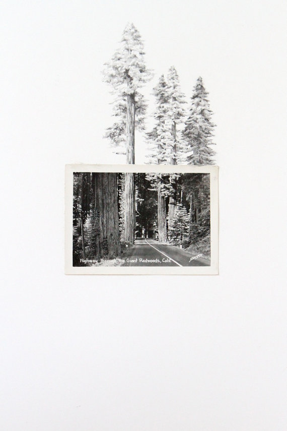 (via CUSTOM vintage photo with drawing by spencerstudioshop on Etsy)
