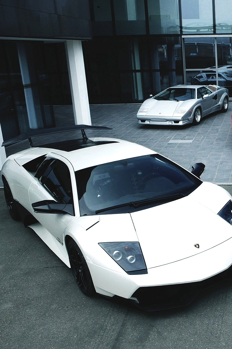 charliebrowwn:  drugera:  Murcielago x Countach   Countach is my favourite, it needs to be red or black though and have a fat ass spoiler