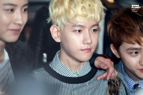 130328 10 Corso Como Launching Party My Chanbaek feeeeeelsssㅋㅋㅋㅋㅋ cr: minorplanetDo not edit.