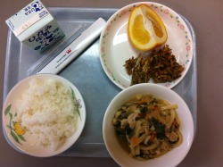 Today's school lunch: rice, baby shrimp and burdock kakiage, chicken udon, and a slice of orange.