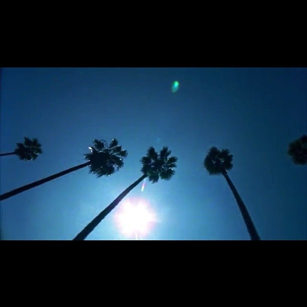 Love #DaftPunk's teasers; here's part 2. #ToddEdwards' view along Mulholland Drive. He moved to California for #RandomAccessMemories! He passionately talks #inspiration, #music, and #sampling: https://www.youtube.com/embed/yf2bu0P_4Vo