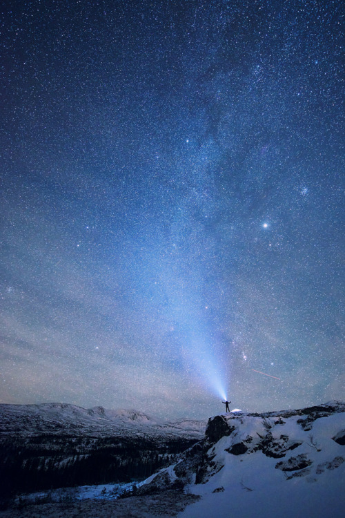 lygophilia:  Geminide night (by Børge Wahl)