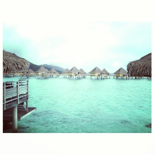 fo-il:  First day in Bora Bora… speechless <3