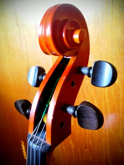 Wm Lewis & Son 4/4 cello