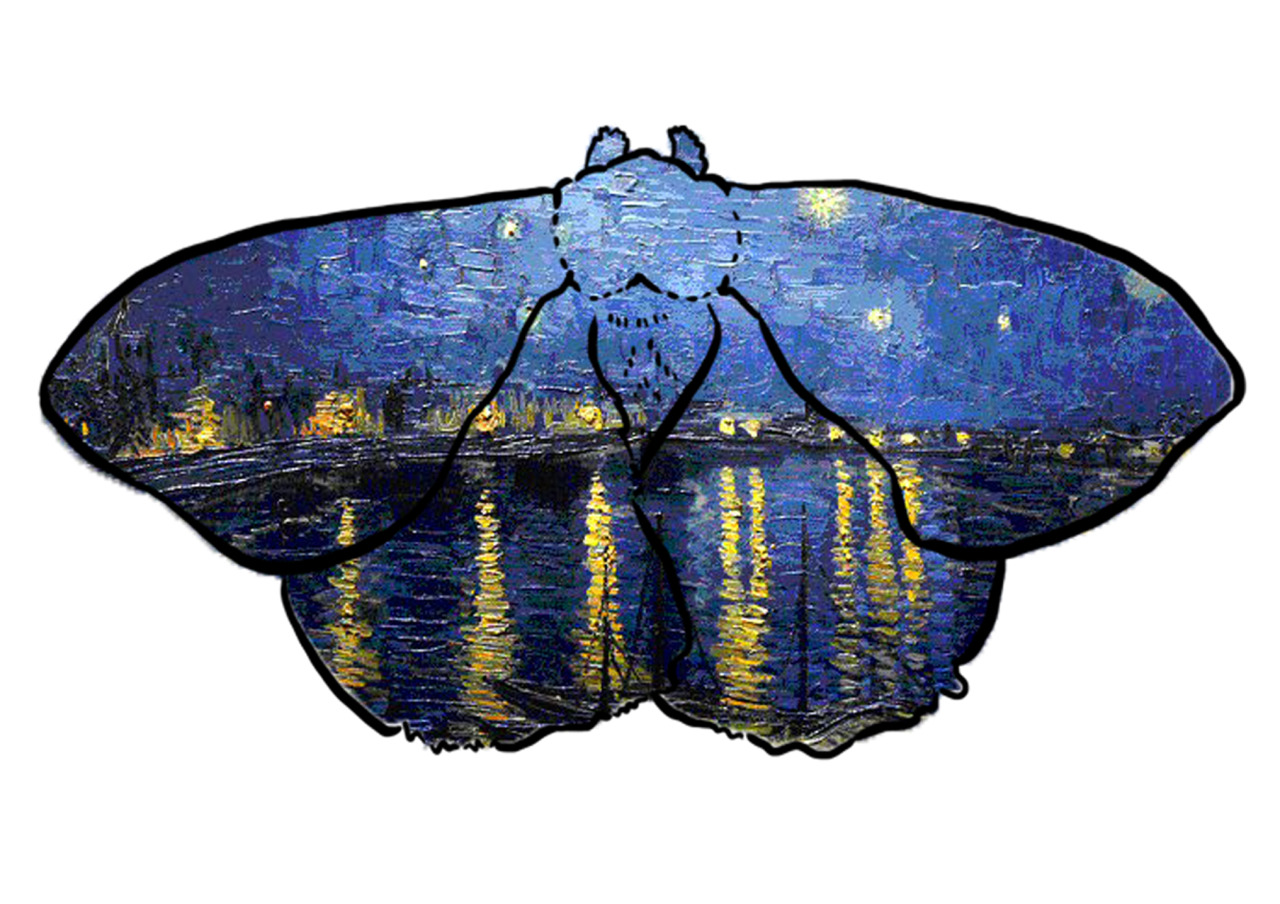 Starry Night Over the Rhone - Van Gogh  Moth Series #3