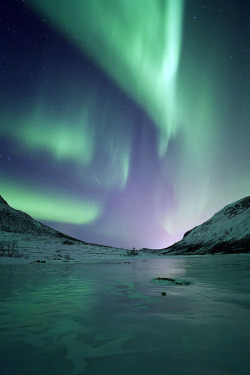 touchdisky:  Kattfjordeidet, Arctic by peterspencer49