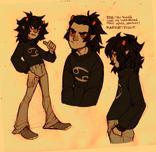 elanorpam:  kitkaloid:  a boy + 3 years of hair growth  THIS IS CANON NOW IN MY HEART